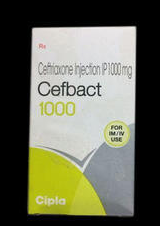 Cefbact 250